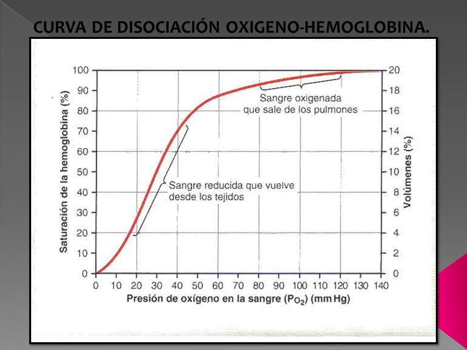 CURVA DE DISOCIACIÓN OXIGENO-HEMOGLOBINA.