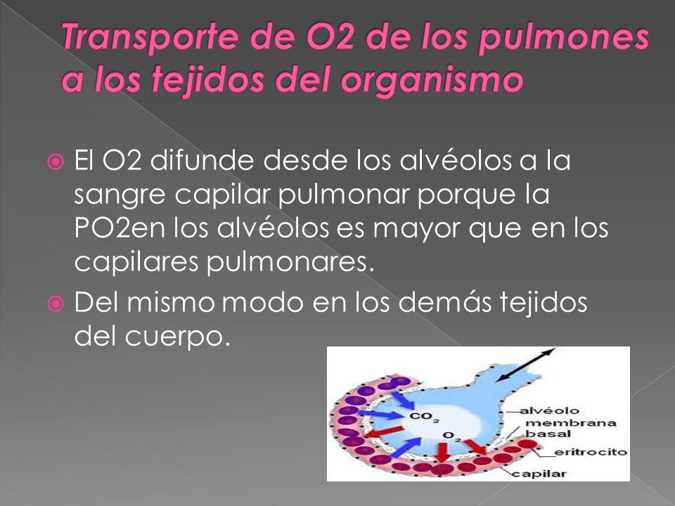 Transporte de O2 de los pulmones a los tejidos del organismo