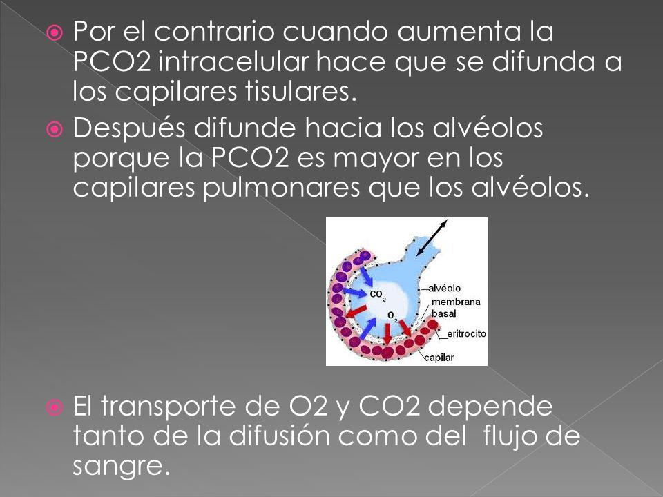 Por el contrario cuando aumenta la PCO2 intracelular hace que se difunda a los capilares tisulares.