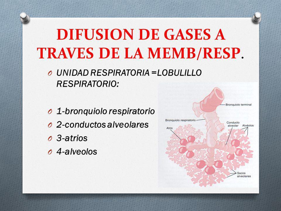 DIFUSION DE GASES A TRAVES DE LA MEMB/RESP.
