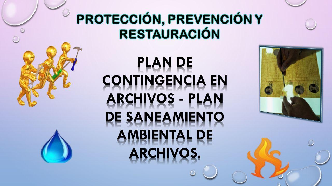 PROTECCIÓN, PREVENCIÓN Y RESTAURACIÓN