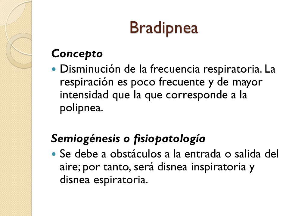 Bradipnea Concepto.