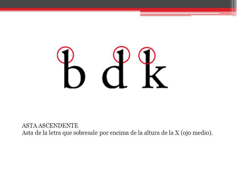 ASTA ASCENDENTE Asta de la letra que sobresale por encima de la altura de la X (ojo medio).