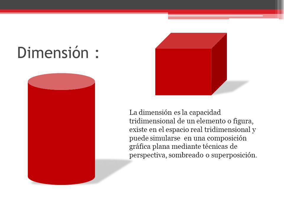 Dimensión :