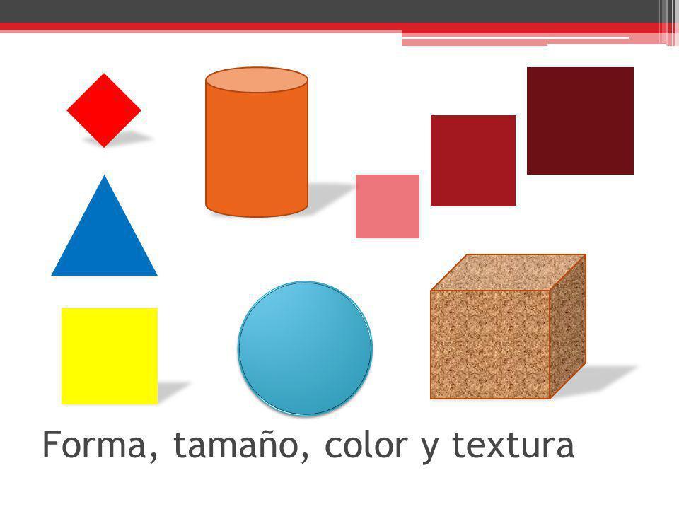 Forma, tamaño, color y textura