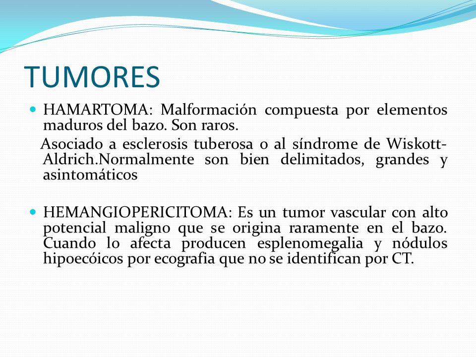 TUMORES HAMARTOMA: Malformación compuesta por elementos maduros del bazo. Son raros.