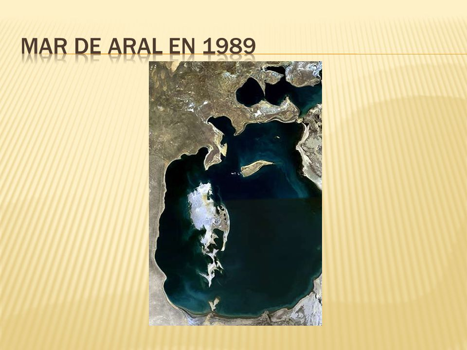 Mar de aral en 1989