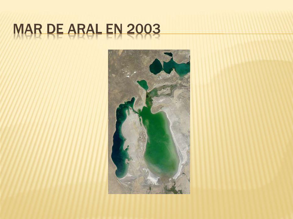 Mar de aral en 2003