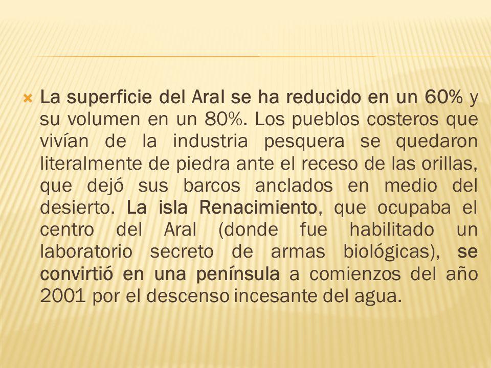 La superficie del Aral se ha reducido en un 60% y su volumen en un 80%