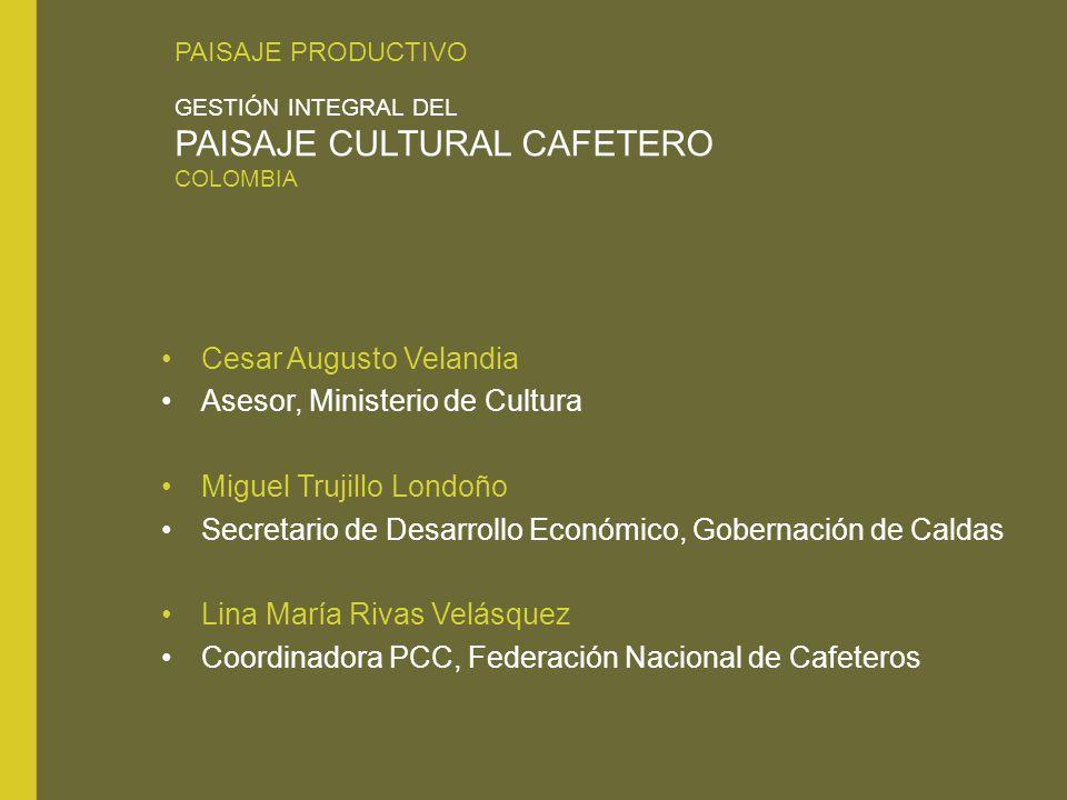 Cesar Augusto Velandia Asesor, Ministerio de Cultura