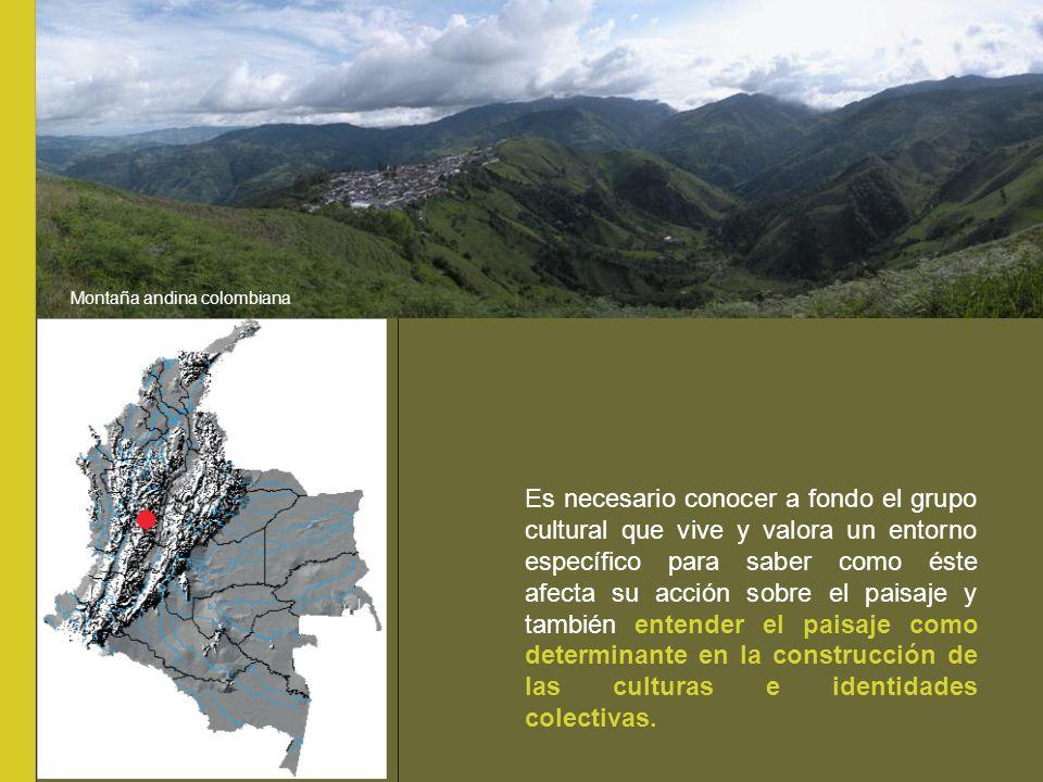 Montaña andina colombiana
