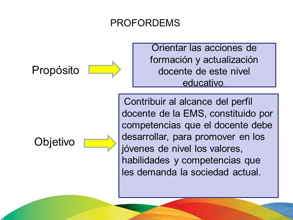 Propósito Objetivo PROFORDEMS