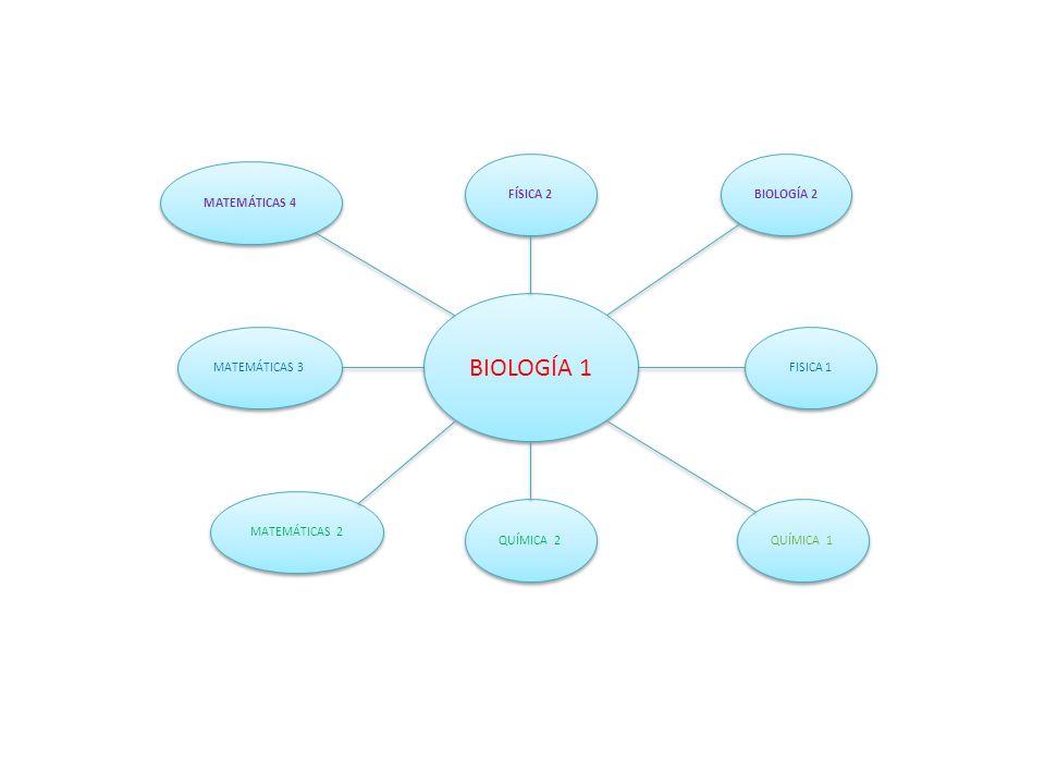 BIOLOGÍA 1 FÍSICA 2 BIOLOGÍA 2 MATEMÁTICAS 4 MATEMÁTICAS 3 FISICA 1