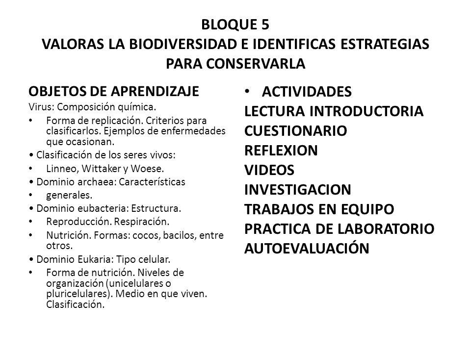 LECTURA INTRODUCTORIA CUESTIONARIO REFLEXION VIDEOS INVESTIGACION