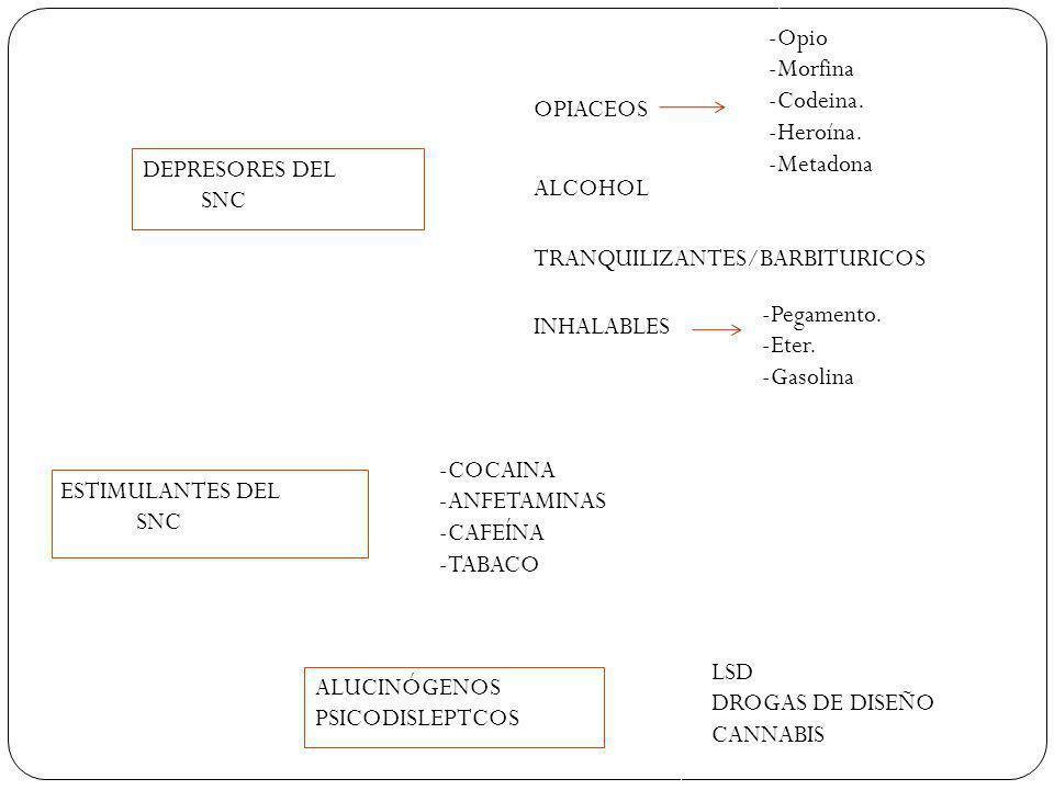 -Opio -Morfina. -Codeina. -Heroína. -Metadona. OPIACEOS. DEPRESORES DEL. SNC. ALCOHOL. TRANQUILIZANTES/BARBITURICOS.