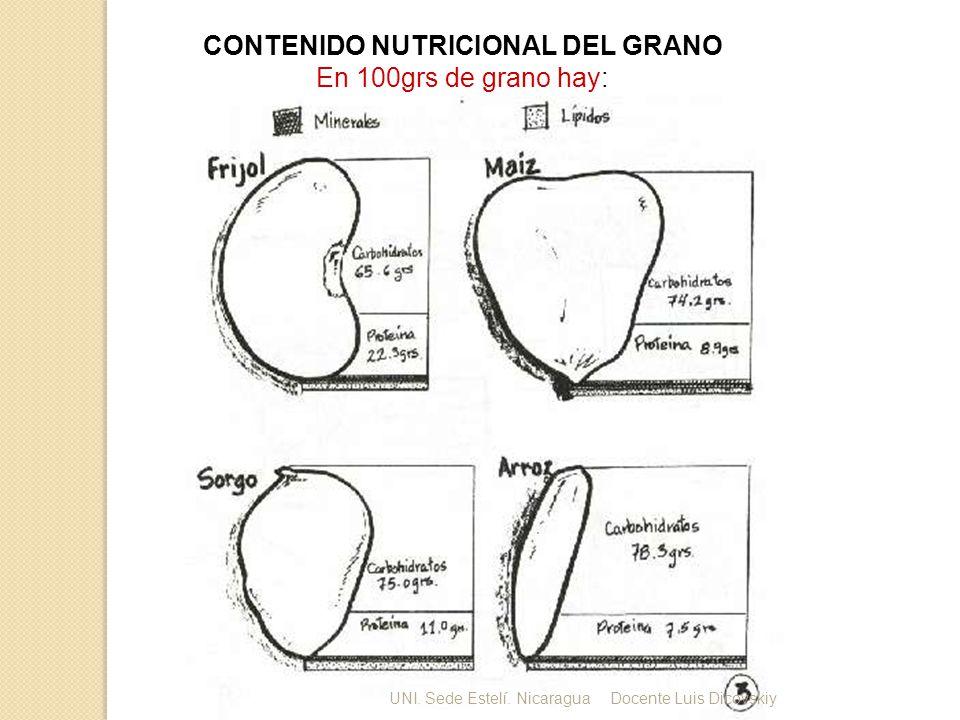 CONTENIDO NUTRICIONAL DEL GRANO En 100grs de grano hay: