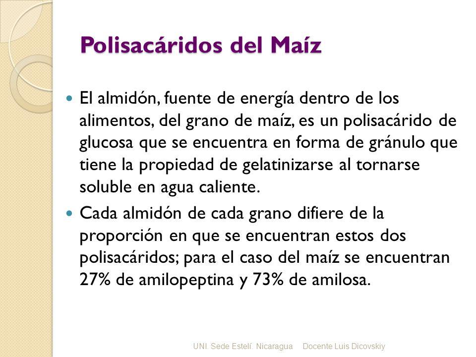 Polisacáridos del Maíz