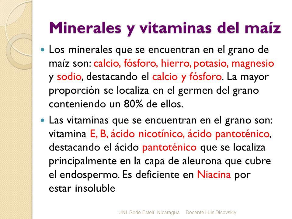 Minerales y vitaminas del maíz