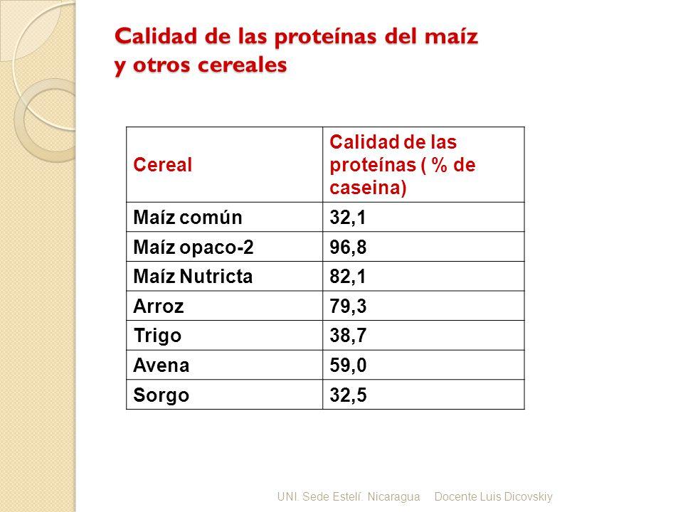 Calidad de las proteínas del maíz y otros cereales