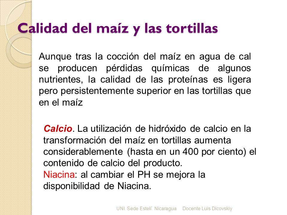 Calidad del maíz y las tortillas
