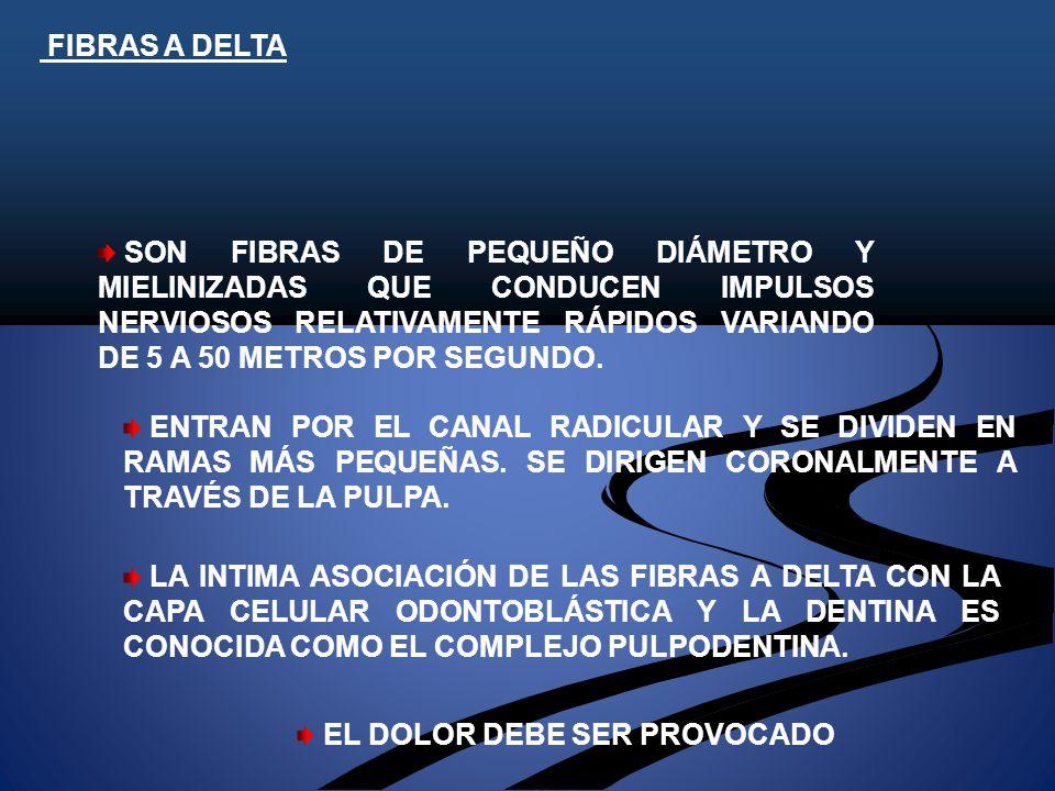 FIBRAS A DELTA