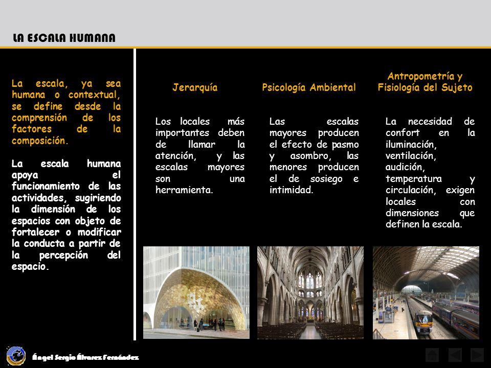 Antropometría y Fisiología del Sujeto