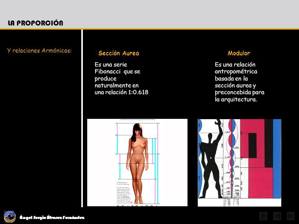 La Proporción Sección Aurea Modulor Y relaciones Armónicas: