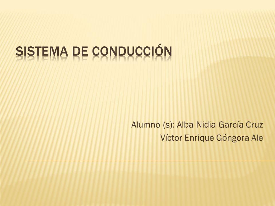 Alumno (s): Alba Nidia García Cruz Víctor Enrique Góngora Ale