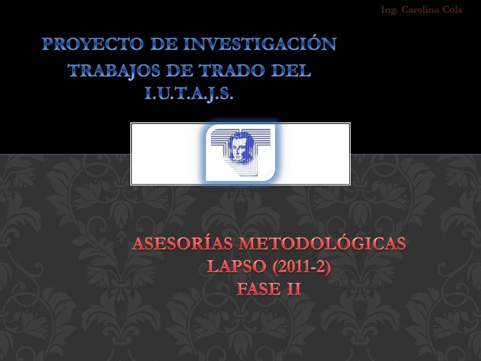 Asesorías Metodológicas LAPSO (2011-2) Fase II