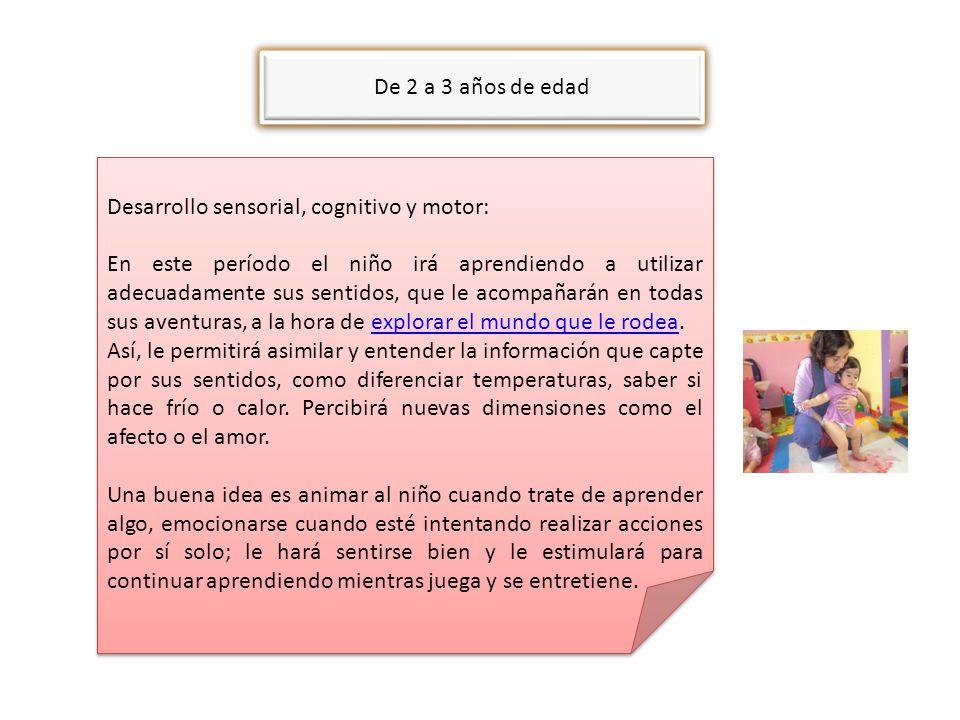 De 2 a 3 años de edad Desarrollo sensorial, cognitivo y motor: