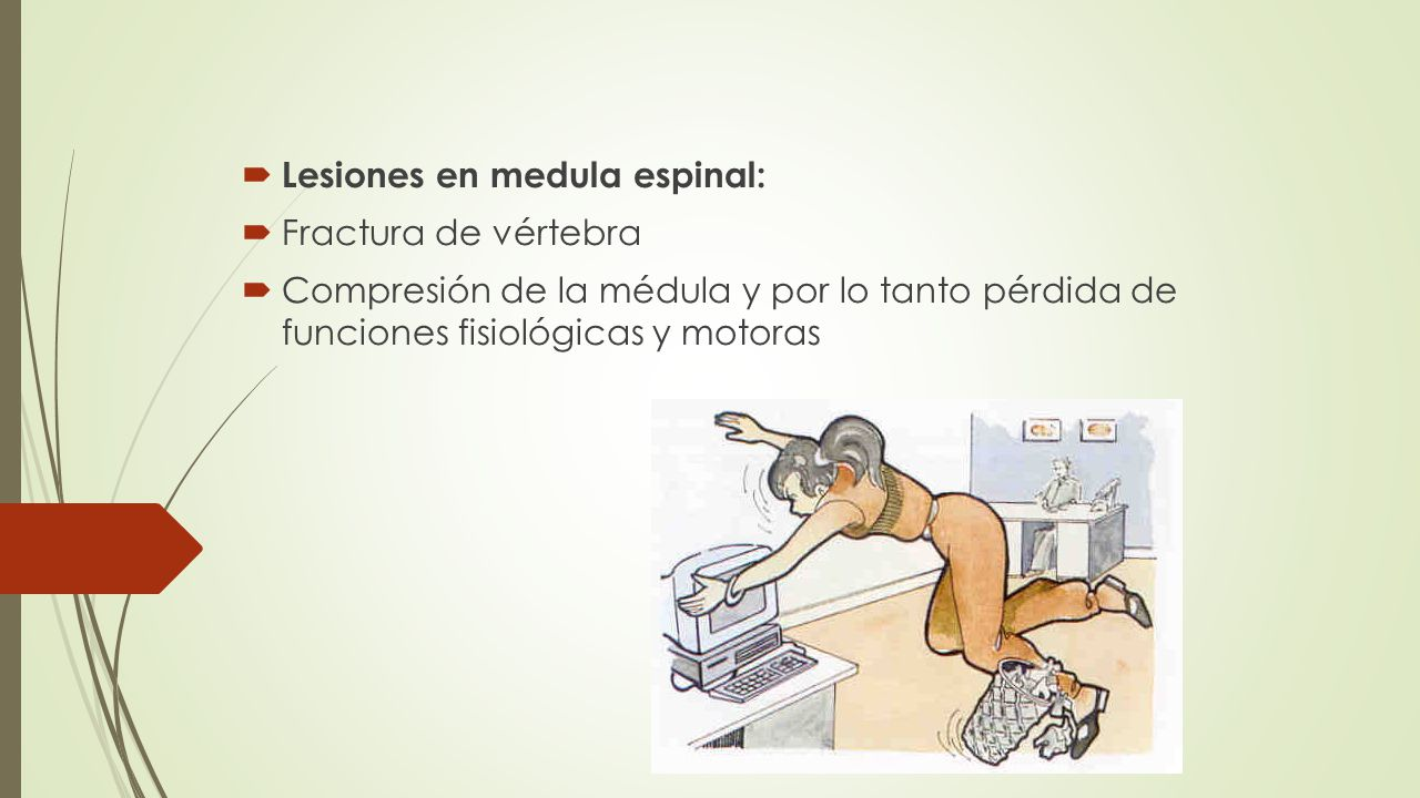 Lesiones en medula espinal:
