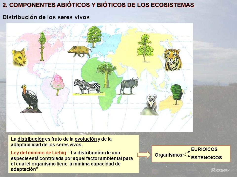2. COMPONENTES ABIÓTICOS Y BIÓTICOS DE LOS ECOSISTEMAS