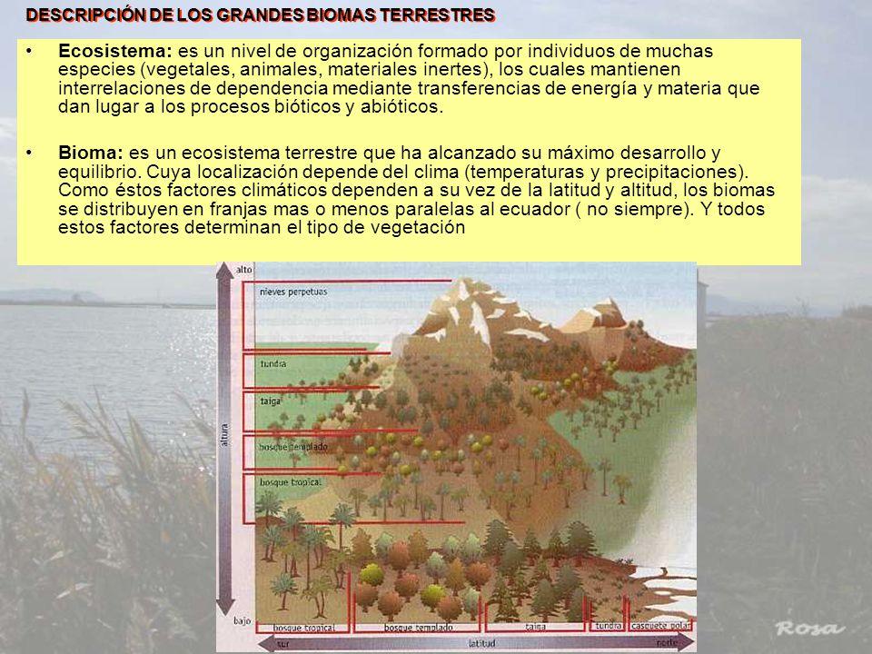 DESCRIPCIÓN DE LOS GRANDES BIOMAS TERRESTRES