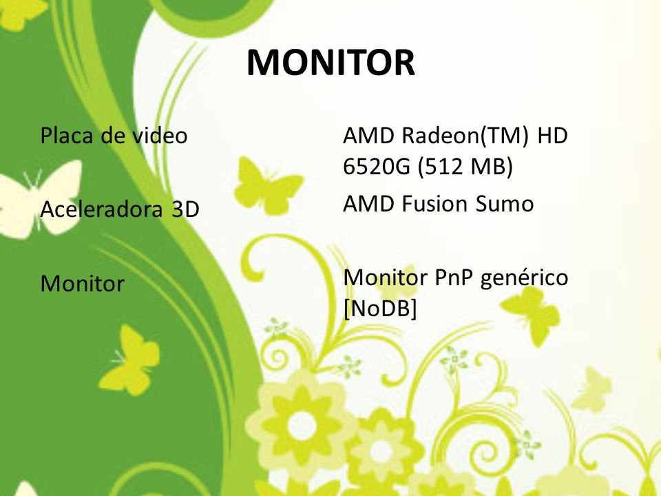 MONITOR Placa de video Aceleradora 3D Monitor