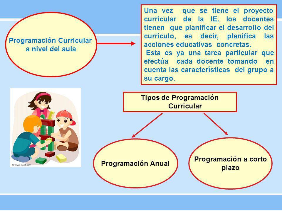 Programación Curricular a nivel del aula