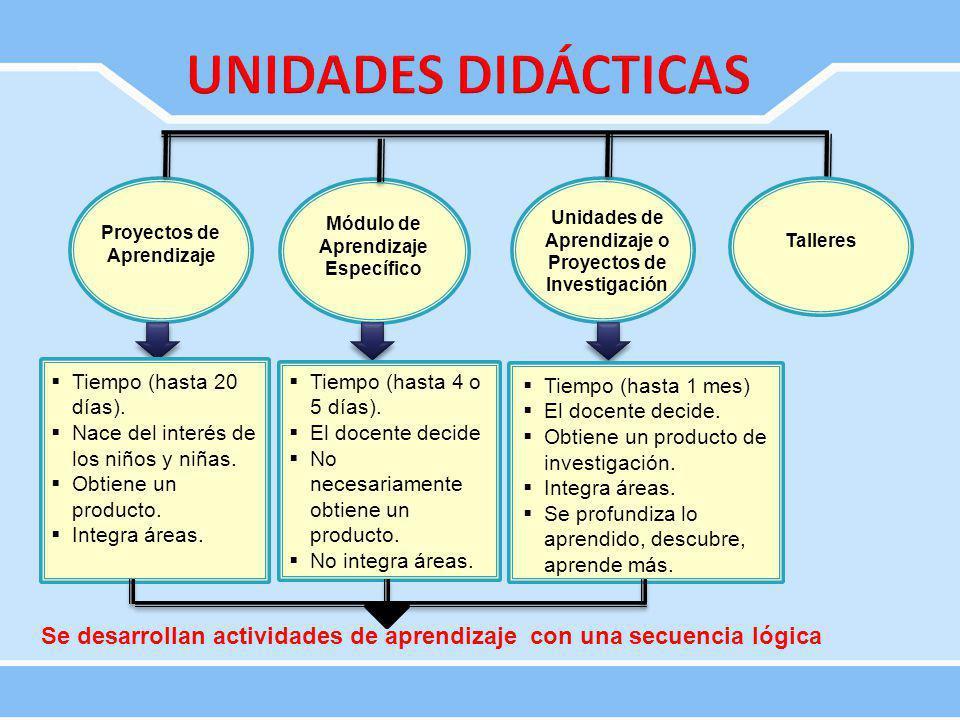 UNIDADES DIDÁCTICAS Proyectos de Aprendizaje. Módulo de Aprendizaje Específico. Unidades de Aprendizaje o Proyectos de Investigación.