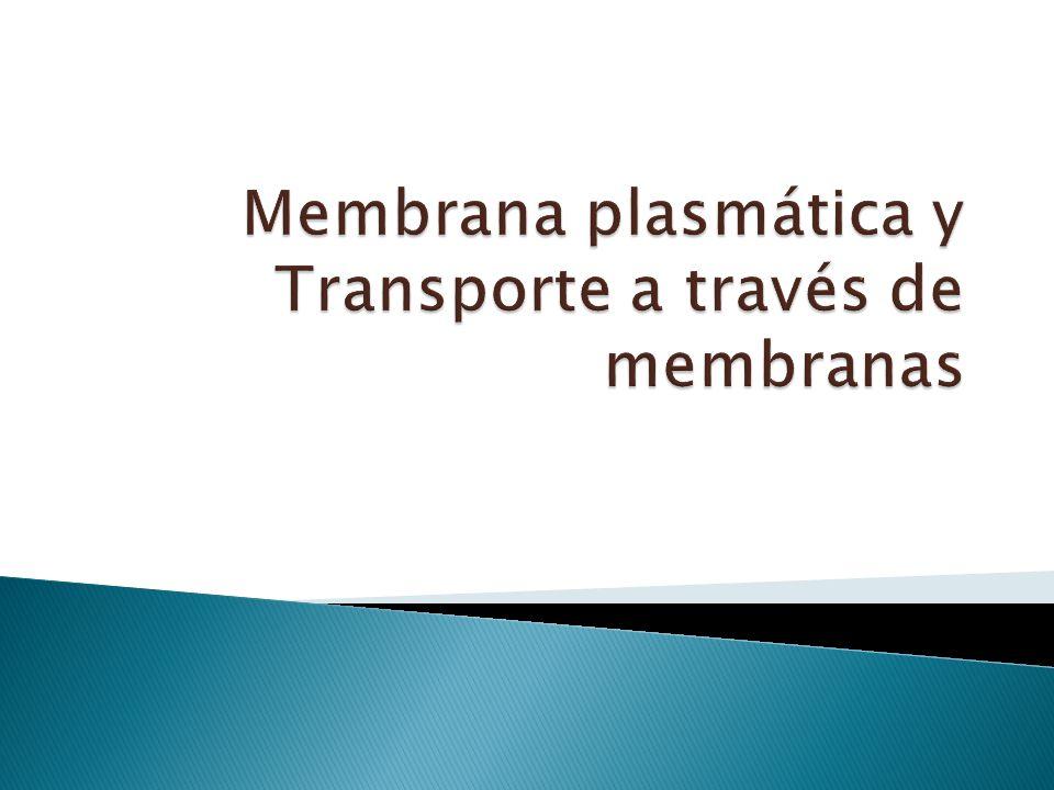 Membrana plasmática y Transporte a través de membranas