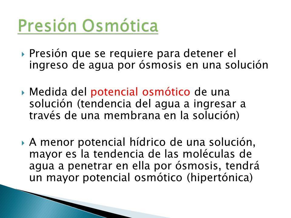 Presión Osmótica Presión que se requiere para detener el ingreso de agua por ósmosis en una solución.