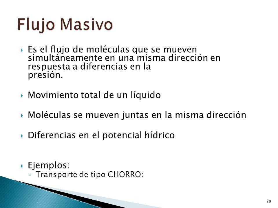 Flujo Masivo Es el flujo de moléculas que se mueven simultáneamente en una misma dirección en respuesta a diferencias en la presión.