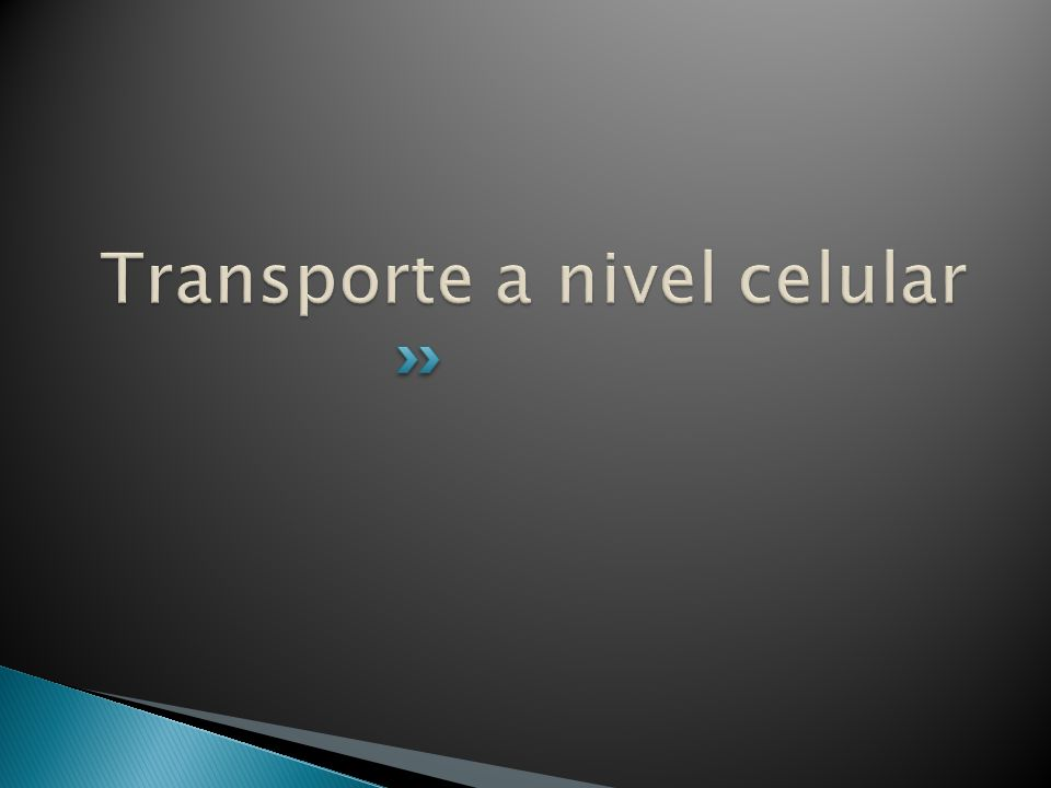 Transporte a nivel celular