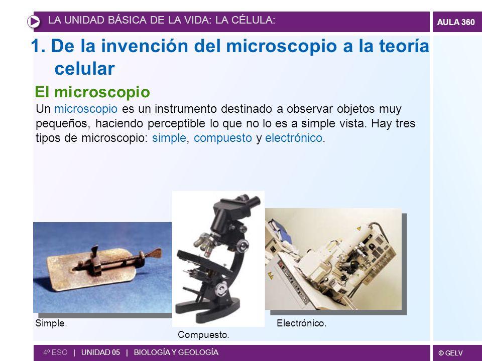 1. De la invención del microscopio a la teoría celular