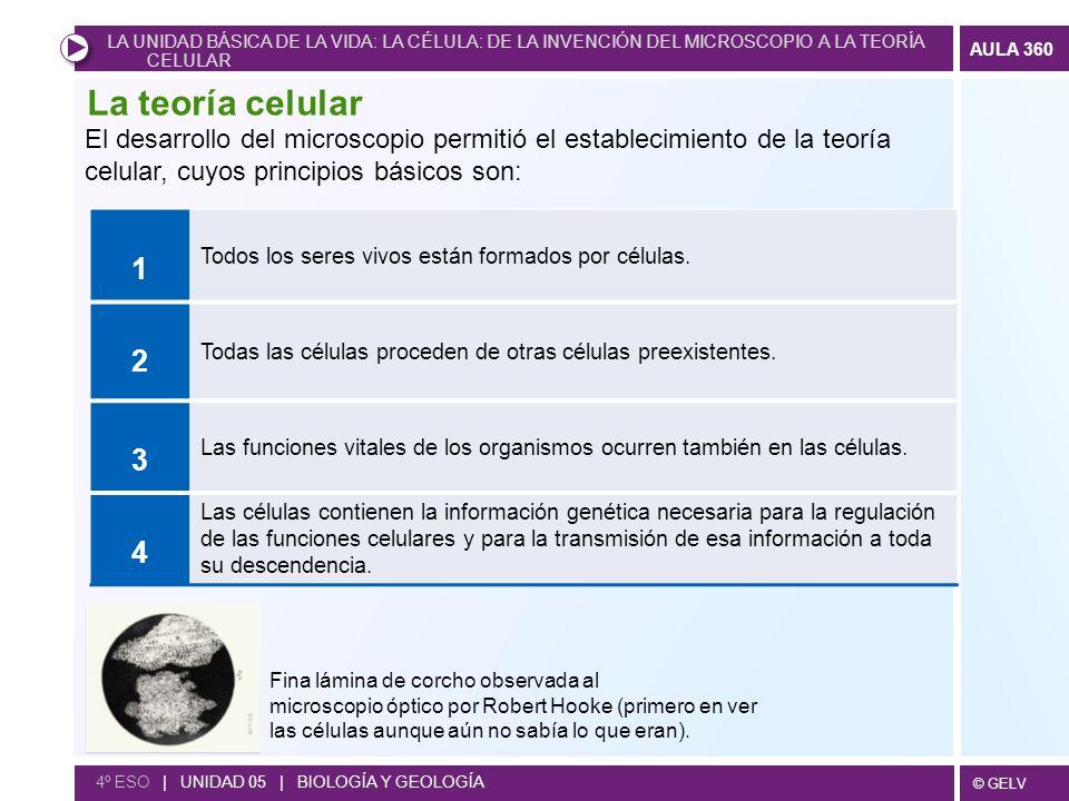 LA UNIDAD BÁSICA DE LA VIDA: LA CÉLULA: DE LA INVENCIÓN DEL MICROSCOPIO A LA TEORÍA CELULAR