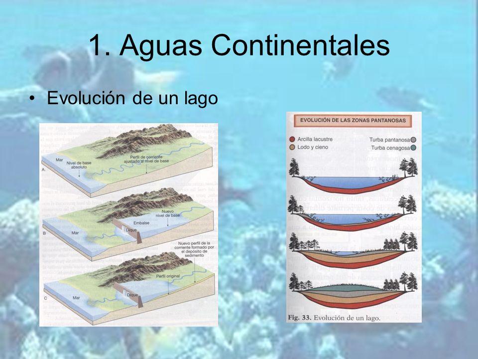 1. Aguas Continentales Evolución de un lago