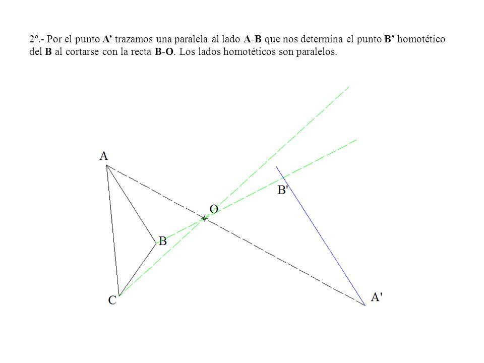 2º.- Por el punto A' trazamos una paralela al lado A-B que nos determina el punto B' homotético del B al cortarse con la recta B-O.