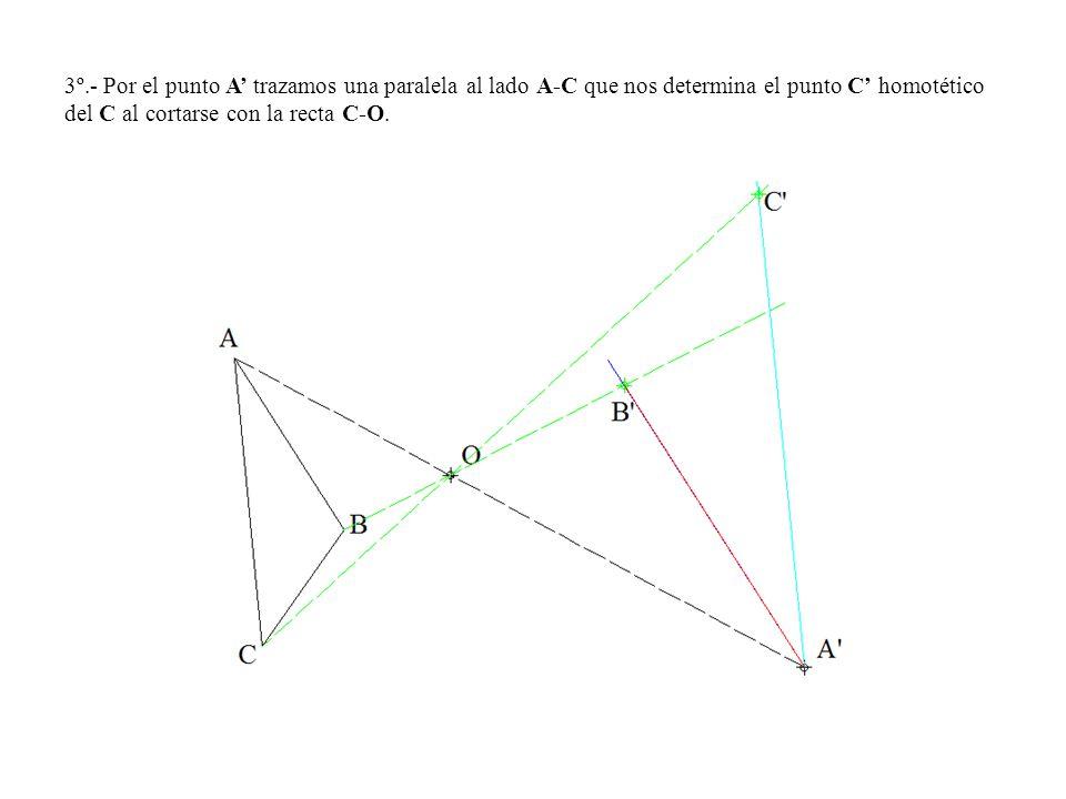 3º.- Por el punto A' trazamos una paralela al lado A-C que nos determina el punto C' homotético del C al cortarse con la recta C-O.