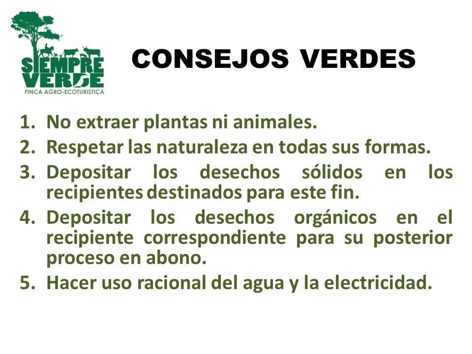 CONSEJOS VERDES No extraer plantas ni animales.