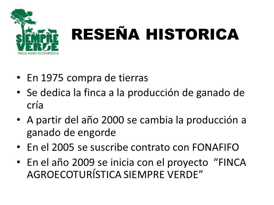 RESEÑA HISTORICA En 1975 compra de tierras