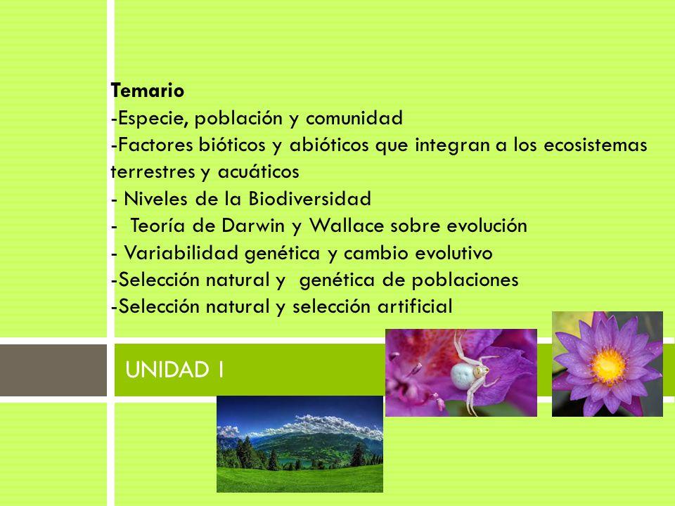 UNIDAD I Temario -Especie, población y comunidad