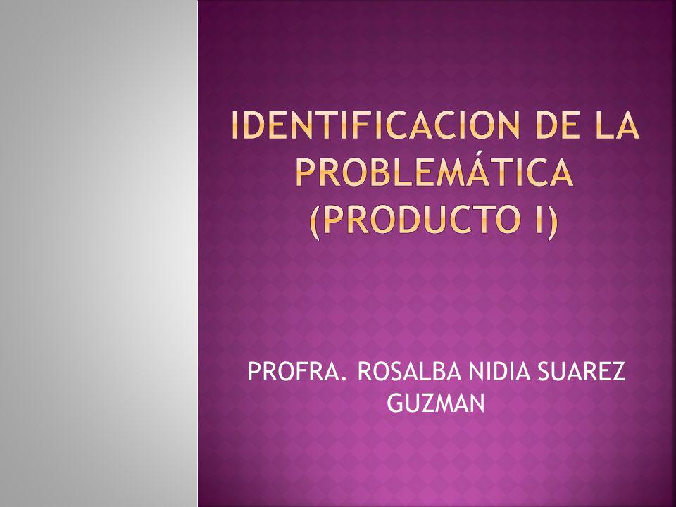 IDENTIFICACION DE LA PROBLEMÁTICA (PRODUCTO I)