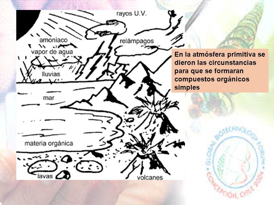 En la atmósfera primitiva se dieron las circunstancias para que se formaran compuestos orgánicos simples
